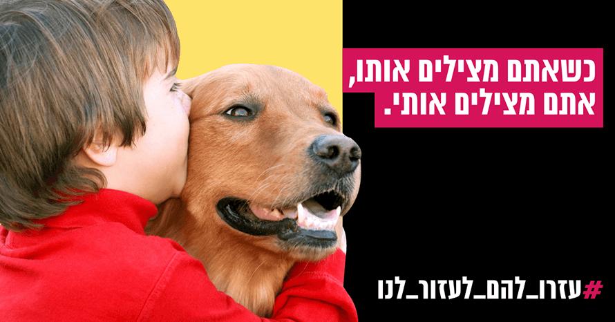 כלבים בשרות אנשים
